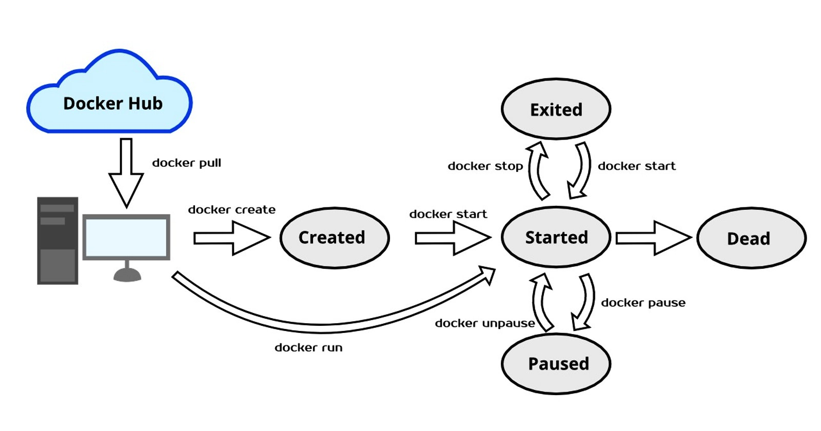 Introduction to The Docker Life Cycle